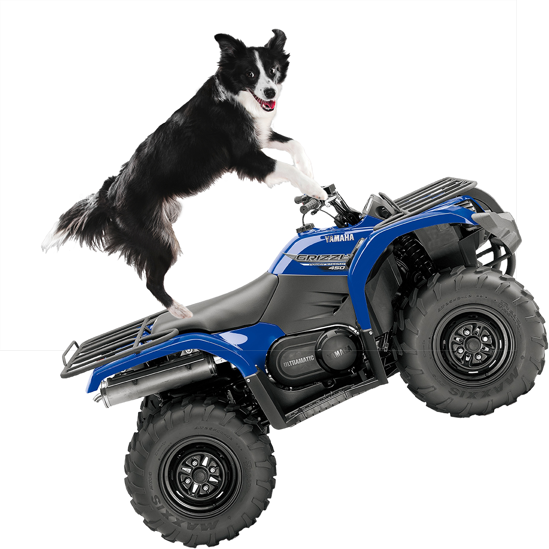 Uncategorized Pictures Of Quads quadventure quad attack wexford quads activity centre south east fun for all the family